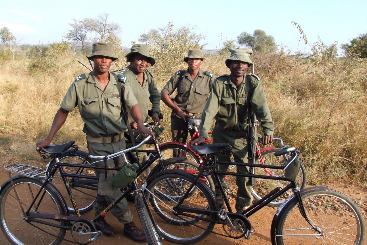 Kruger National Park. Image by Ptera from Pixabay