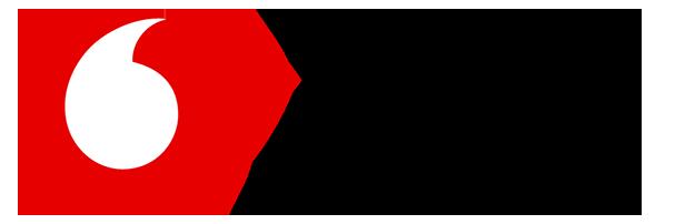 Vodafone Ireland Foundation